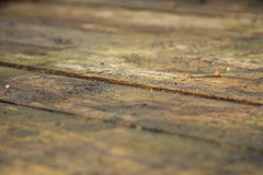 Old Damp Wooden Boards Stock Images