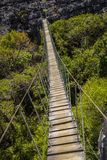 Old dangerous suspension bridge on a green park in Madagascar Royalty Free Stock Photo