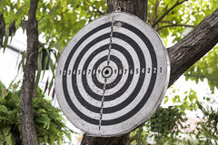 Old dart board hanging on a tree royalty free stock photo