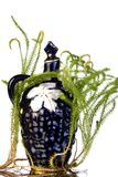 Old decanter with lycopodium Stock Images