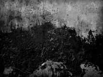 Old Decay Wall Texture Royalty Free Stock Image