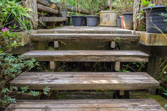 Old decay wood stairs up in garden Stock Photo