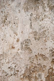 Old Decayed Mud Plastered Wall Stock Image