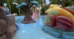 Old decorations in a water park. Some cement decorative items used as a decoration in a water park in mexico, a frog one tree and some stones Stock Photography