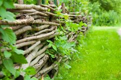 Old decorative fence of tree branches. grow green grass royalty free stock photo