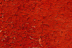 Old dense cracky paint. Royalty Free Stock Image