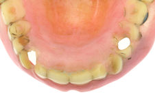 Old dentures with holes Stock Image