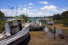Old derelict boats in mangroves Stock Photography