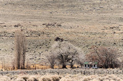 Deserted ranch in the Nevada desert Royalty Free Stock Photo