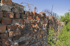 Old destroyed red brick wall with barbed wire royalty free stock image