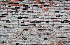 Old destroyed red brick wall painted white texture.  Stock Image