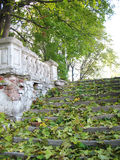 Old destroyed stair. Old destroyed lithoidal stair all is strewed by leaves in an autumn day Stock Photography