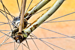 Details of bicycle wheel Royalty Free Stock Photo