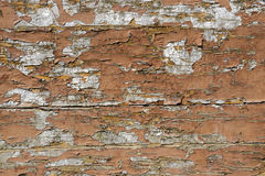 Old deteriorated wall texture in bright color Stock Photography