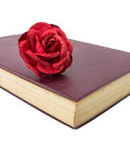 Old diary and rose Royalty Free Stock Images