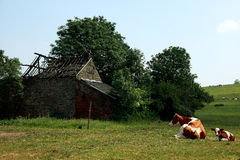 Old dilapidated barn in the countryside Stock Image