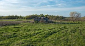 Old dilapidated barn. In the field royalty free stock photo