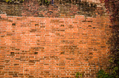 Old dilapidated brick wall Royalty Free Stock Photography