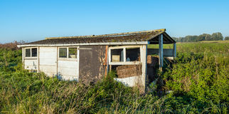 Old dilapidated small shed in a rural area. Old dilapidated small shed made of concrete slabs and with a corrugated roof overgrown with wild plants in early Stock Photography