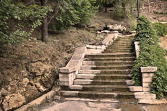 The old dilapidated steps stone stairs in the  park Stock Photography