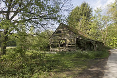 Old dilapidated wooden barn shed surrounded by trees Royalty Free Stock Image