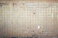 Tile wall Royalty Free Stock Photos