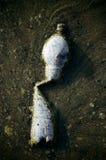 Deformed Water Bottle Stock Images