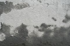 Old dirty grunge cement concrete wall texture with mold Royalty Free Stock Photo
