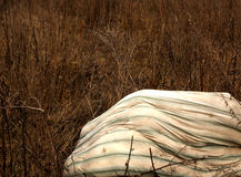 Old dirty matress in dry grass Royalty Free Stock Photography