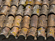 Old dirty orange roof tiles. With moss and lichen Stock Photos