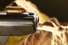 Bullet on gun scene. The old and dirty pistol bullet put on the gun represent the weapon and bullet concept related idea Royalty Free Stock Photo