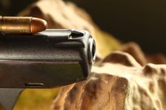 Bullet on gun scene. The old and dirty pistol bullet put on the gun represent the weapon and bullet concept related idea Stock Photos