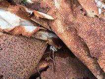 Old dirty rusty metal junk Stock Image