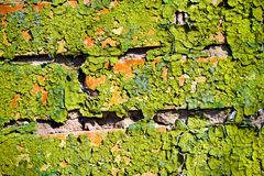 Old dirty wall Stock Images