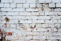 Old dirty white brick wall Royalty Free Stock Photography