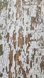 White painted distressed cracked wooden plank texture stock images