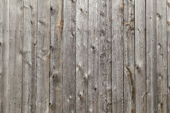 Old dirty wooden wall texture or background. Old grey dirty wooden wall texture or background Royalty Free Stock Photography