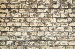 Old dirty yellow brick wall, closeup Stock Photos