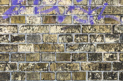 Old dirty yellow green vintage brick wall background with purple. Old dirty yellow green vintage brick wall texture with purple Royalty Free Stock Photography