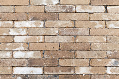 Old dirty yellow white brick wall texture Stock Images