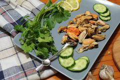 An old dish with mussels, slicing cucumbers Royalty Free Stock Images