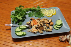 An old dish with mussels, slicing cucumbers Royalty Free Stock Image