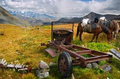 Old dismantling car and horses. Altay Stock Photography