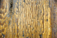 Old Distressed Wood. Old cedar wood carved and burned for effect Royalty Free Stock Photo