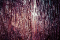 Free Old Distressed Wood Board Plank Grunge Background Royalty Free Stock Photography - 37396857