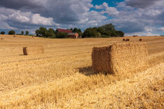 Old disused farm Bedfordshire England Royalty Free Stock Photography