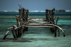 Old dock in tropical water, travel stock photography
