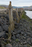 Old Dock in Port Talbot, South Wales. Old dock timbers on River Afon, Port Talbot, South Wales Stock Photos