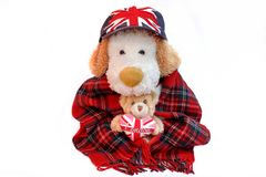 Old Dog Englishman and teddy bear with London Love Heart Stock Photos