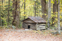 Old dog house in forest Stock Photography